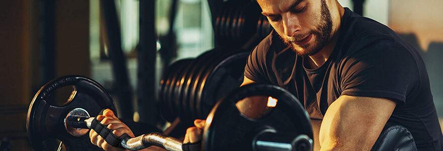 'augmentation de la masse musculaire