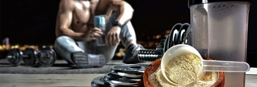 Musculation quelles protéines